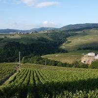 Section Rhône - Saône-et-Loire