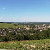 Section Loire